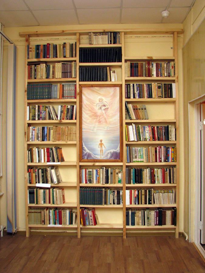 Книги отряда в новом стеллаже обрели свой дом